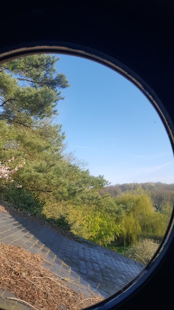LesRosesdeMontherlant-avis-bullesdetestschezflorette (15)
